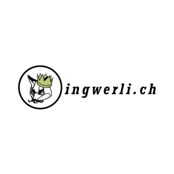 Startup Academy Bern Ingwerli